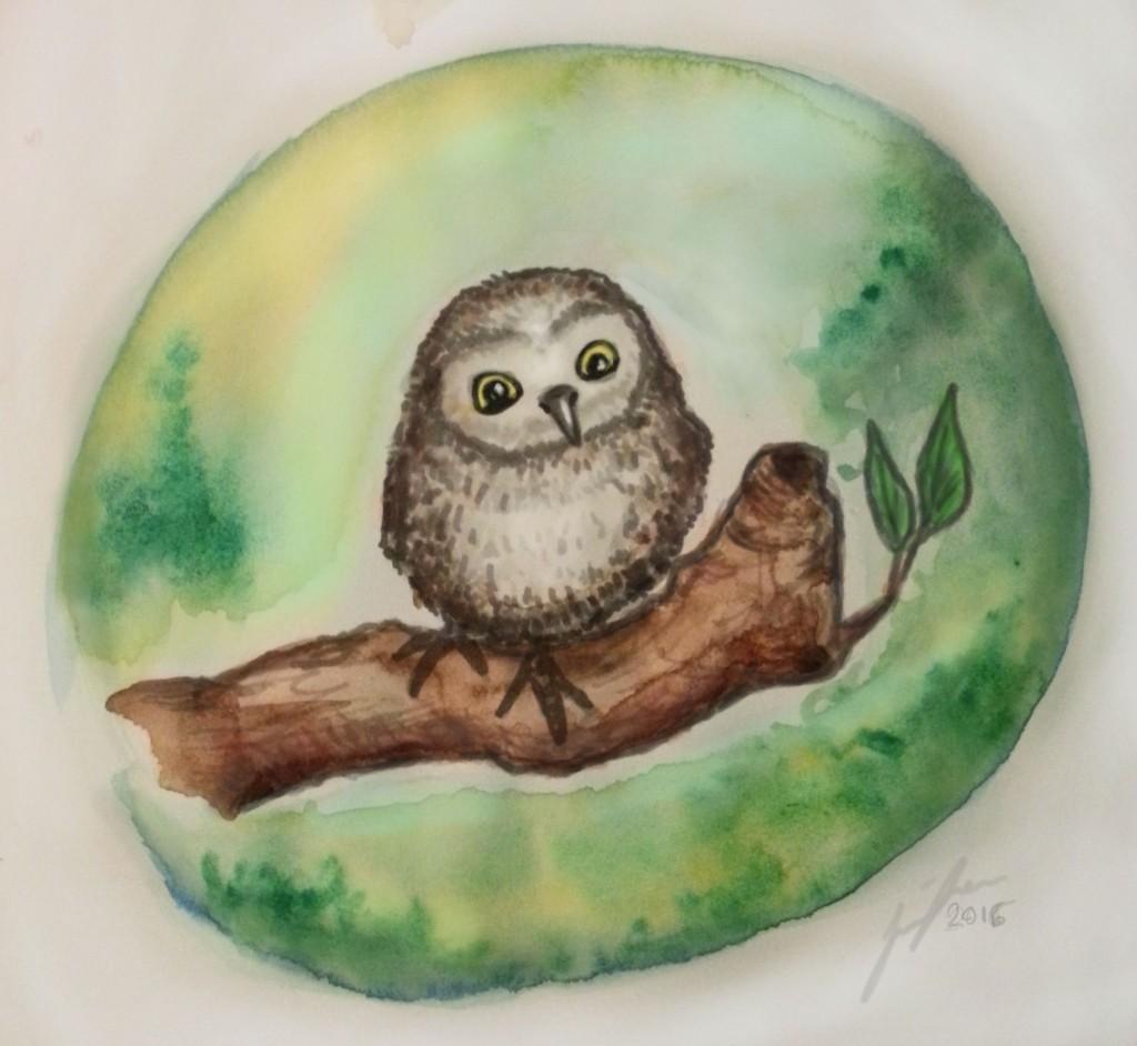 Baby Owl by Jennloop